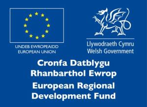 ERDF Logo bilingual